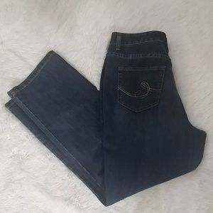 Christopher & Banks Classic Fit Comfy Jeans 10P